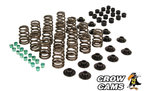 PERFORMANCE VALVE SPRING KIT TO SUIT HSV MALOO VU VY VZ VE VF LS1 LS2 LS3 LSA 5.7L 6.0L 6.2L V8